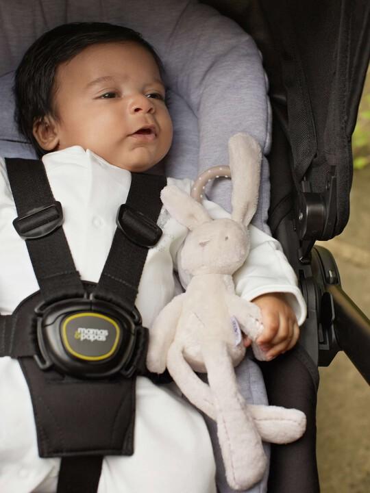 الأرنبة الصغيرة - Millie & Boris image number 4